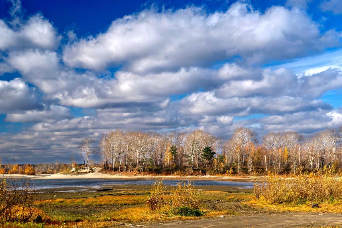 Russland, Wald, Bäume, Sibirien