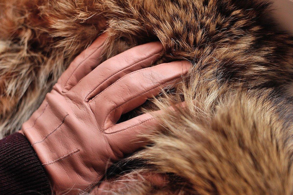 Pelz, Kleidung, Mantel, Handschuh