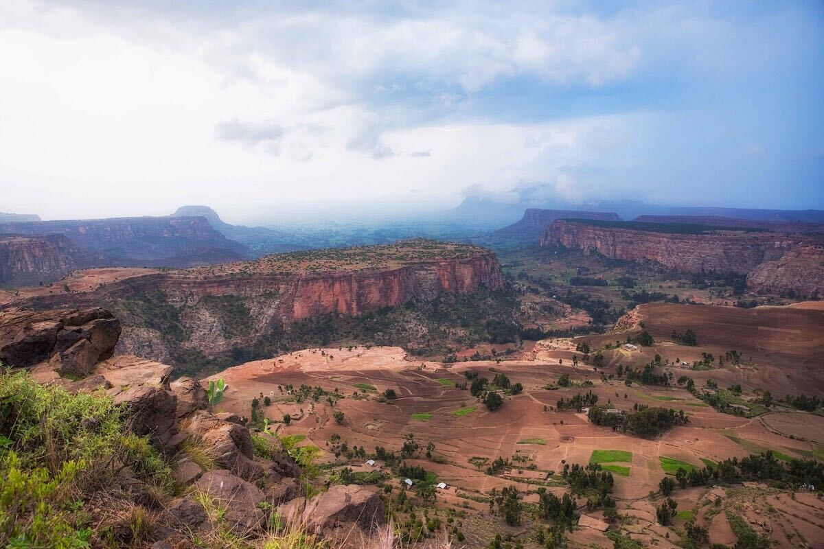 Ethiopia-trees-landscape