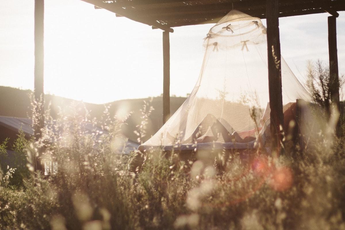 Mosquitoe net
